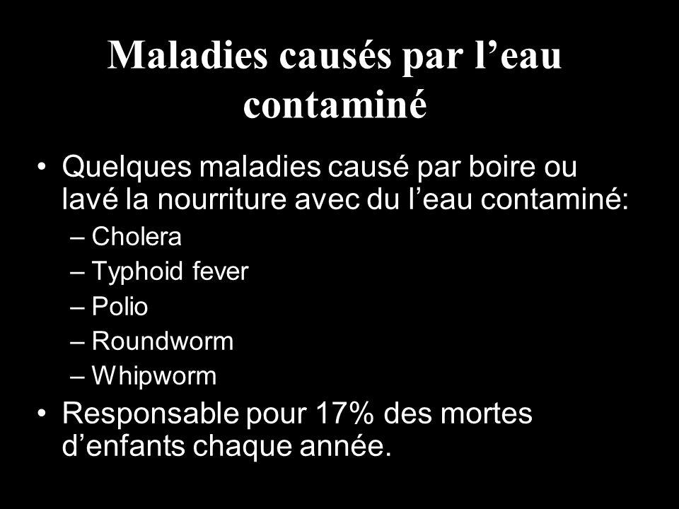 Maladies causés par l'eau contaminé