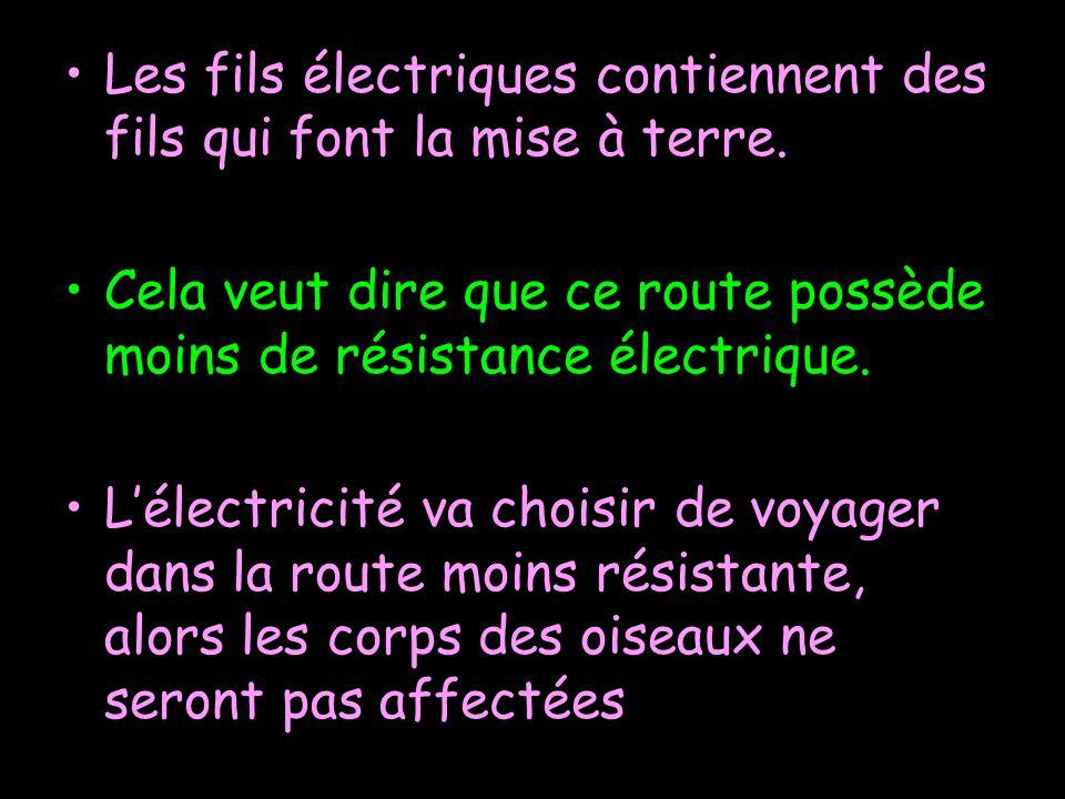 Les fils électriques contiennent des fils qui font la mise à terre.