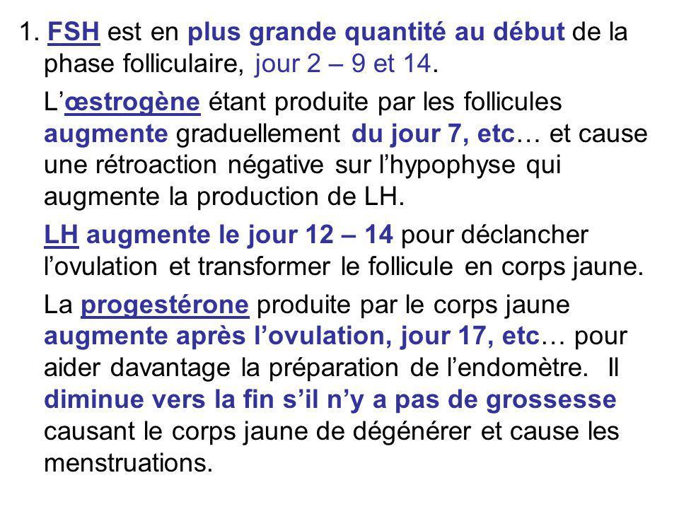 1. FSH est en plus grande quantité au début de la phase folliculaire, jour 2 – 9 et 14.