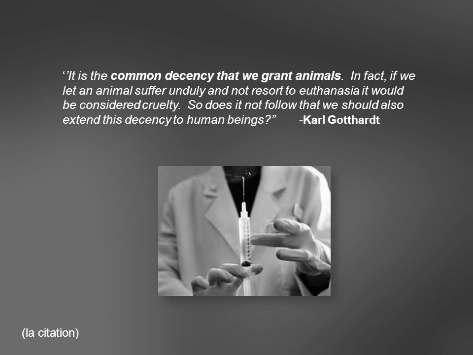 ''It is the common decency that we grant animals