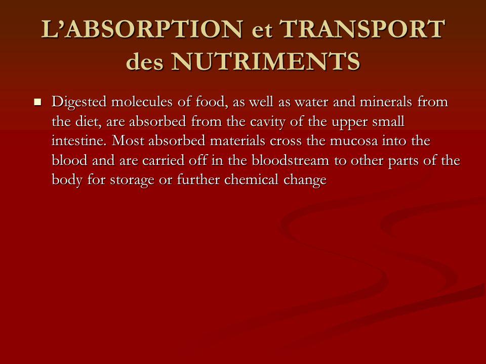 L'ABSORPTION et TRANSPORT des NUTRIMENTS
