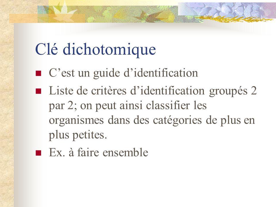 Clé dichotomique C'est un guide d'identification