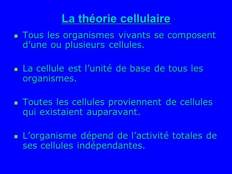 La théorie cellulaire Tous les organismes vivants se composent d'une ou plusieurs cellules. La cellule est l'unité de base de tous les organismes.