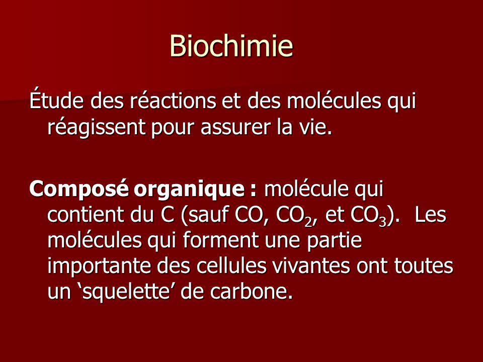 Biochimie Étude des réactions et des molécules qui réagissent pour assurer la vie.