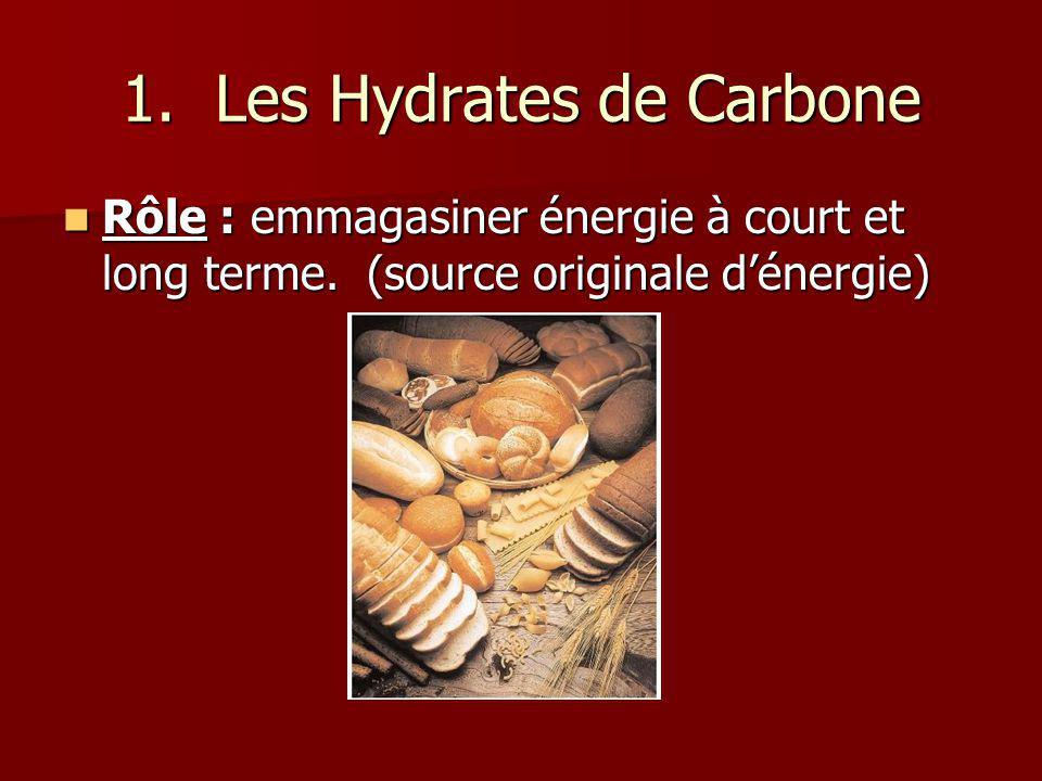 1. Les Hydrates de Carbone