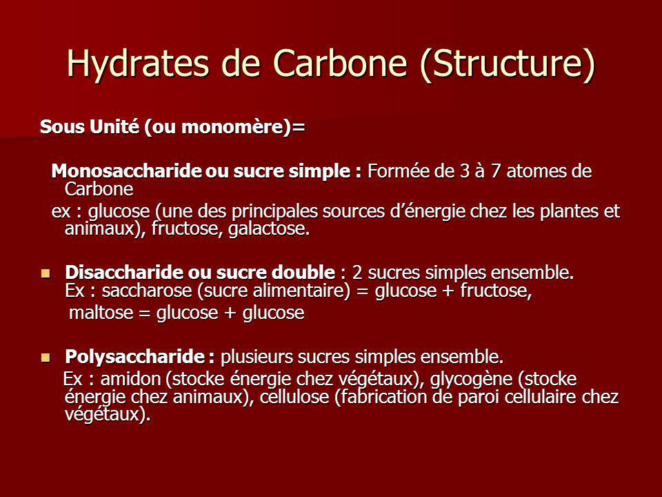 Hydrates de Carbone (Structure)
