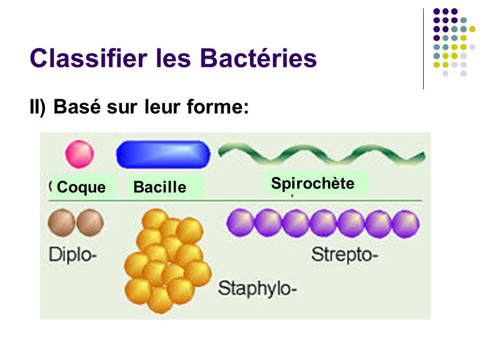 Classifier les Bactéries
