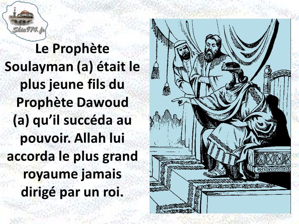 Le Prophète Soulayman (a) était le plus jeune fils du Prophète Dawoud (a) qu'il succéda au pouvoir.
