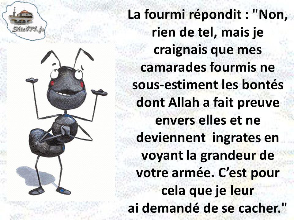 La fourmi répondit : Non, rien de tel, mais je craignais que mes camarades fourmis ne sous-estiment les bontés dont Allah a fait preuve envers elles et ne deviennent ingrates en voyant la grandeur de votre armée.