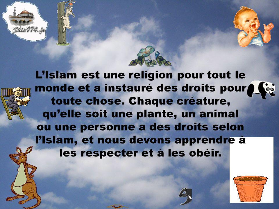 L'Islam est une religion pour tout le monde et a instauré des droits pour toute chose.