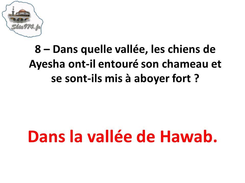 8 – Dans quelle vallée, les chiens de Ayesha ont-il entouré son chameau et se sont-ils mis à aboyer fort