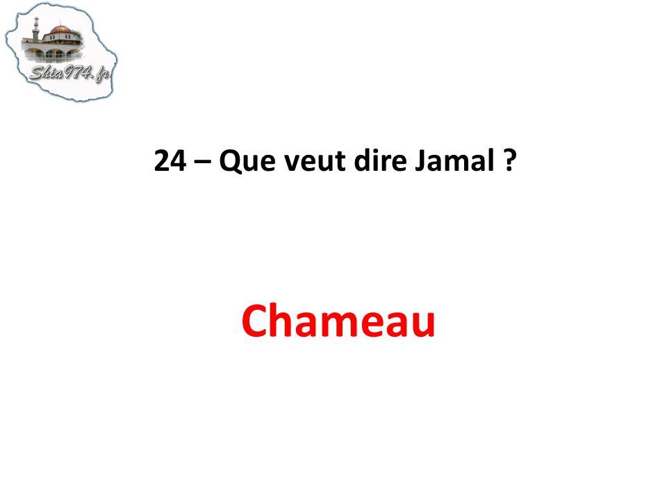 24 – Que veut dire Jamal Chameau