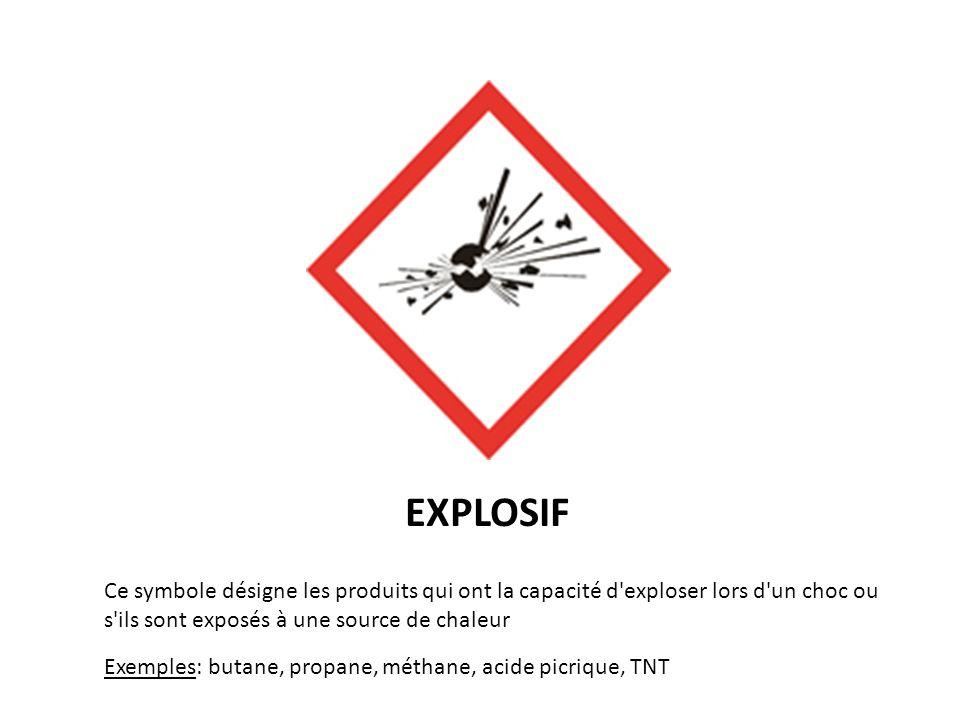 EXPLOSIF Ce symbole désigne les produits qui ont la capacité d exploser lors d un choc ou s ils sont exposés à une source de chaleur.