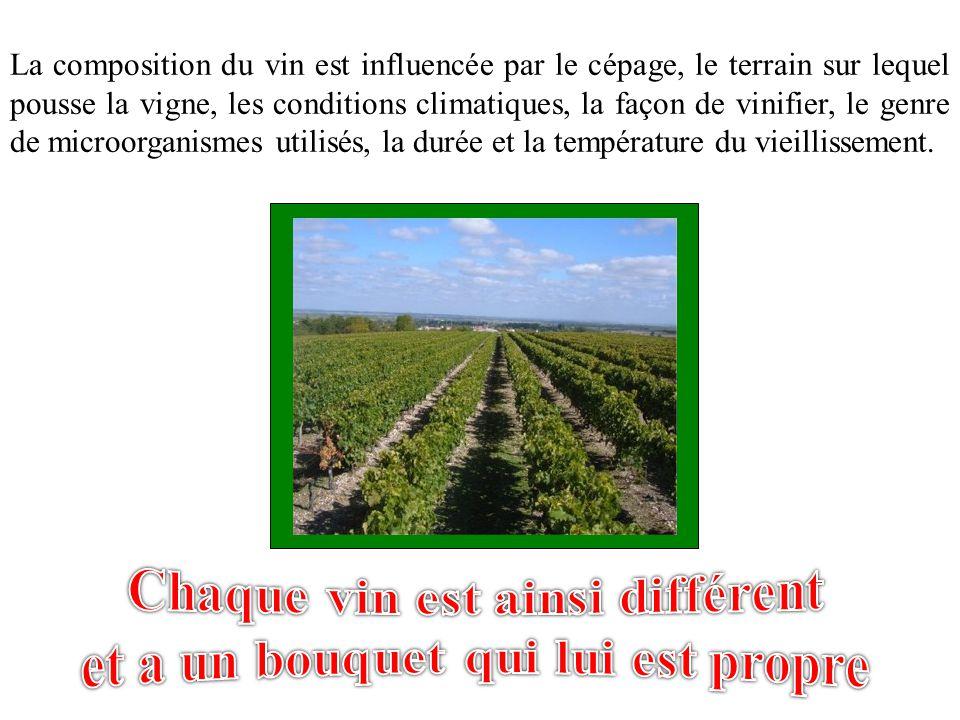 Chaque vin est ainsi différent et a un bouquet qui lui est propre