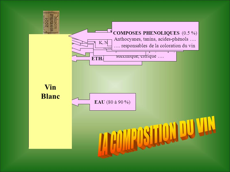 LA COMPOSITION DU VIN Vin Vin Rouge Blanc COMPOSES PHENOLIQUES (0.5 %)