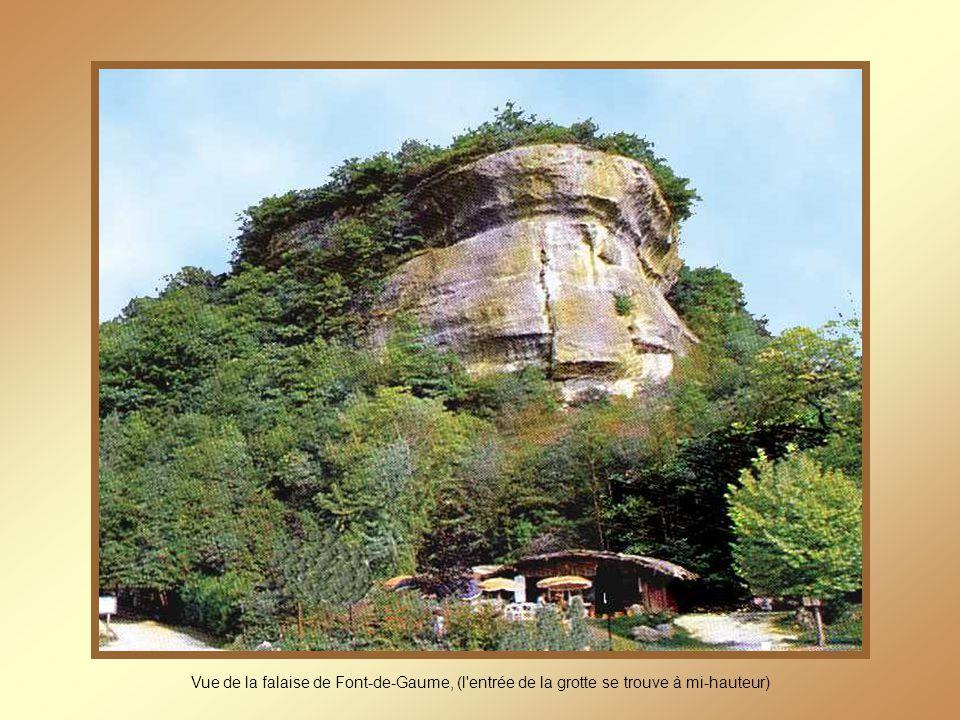 Vue de la falaise de Font-de-Gaume, (l entrée de la grotte se trouve à mi-hauteur)