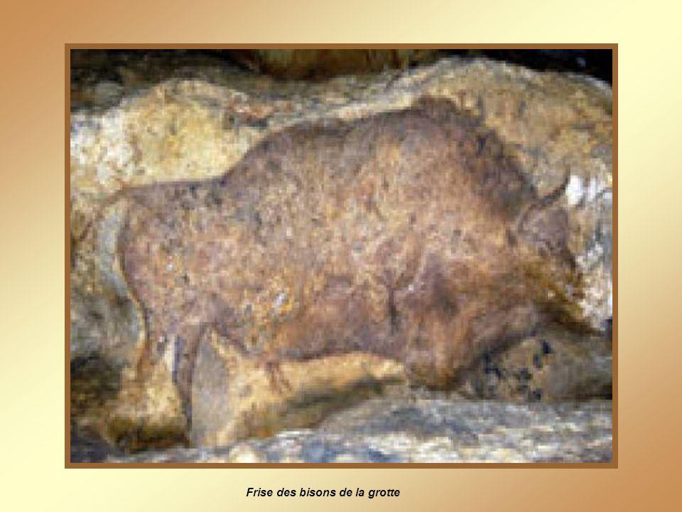 Frise des bisons de la grotte