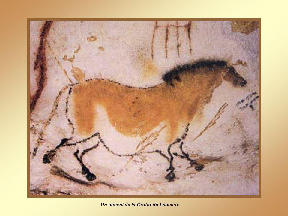 Un cheval de la Grotte de Lascaux