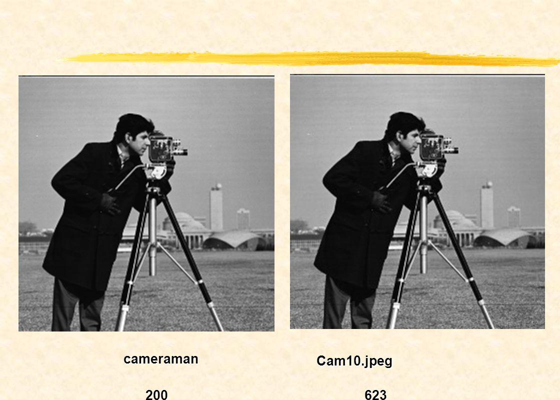 cameraman Cam10.jpeg 200 623