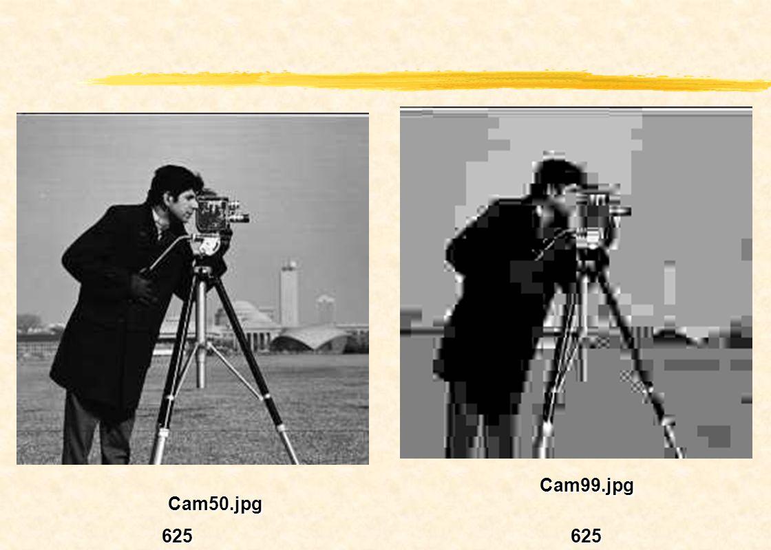 Cam99.jpg Cam50.jpg 625 625