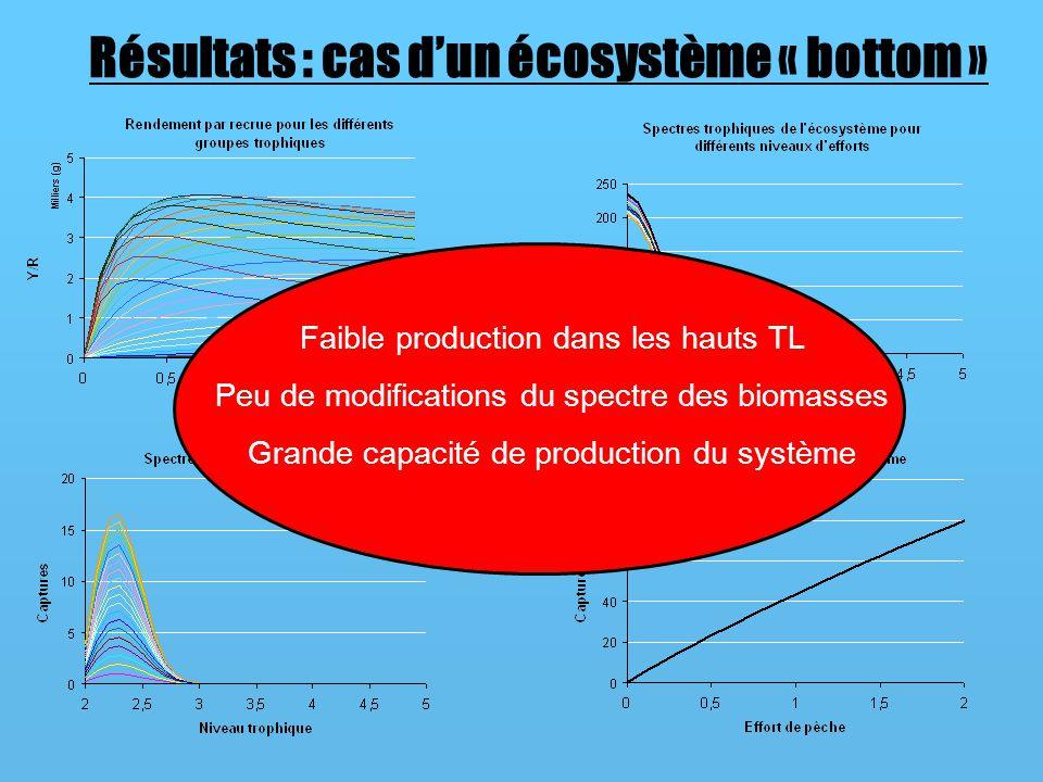 Résultats : cas d'un écosystème « bottom »