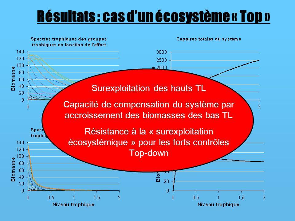 Résultats : cas d'un écosystème « Top »