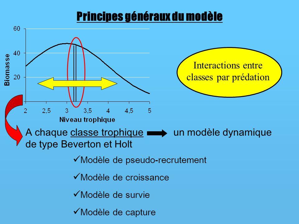 Principes généraux du modèle