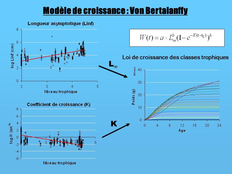 Modèle de croissance : Von Bertalanffy