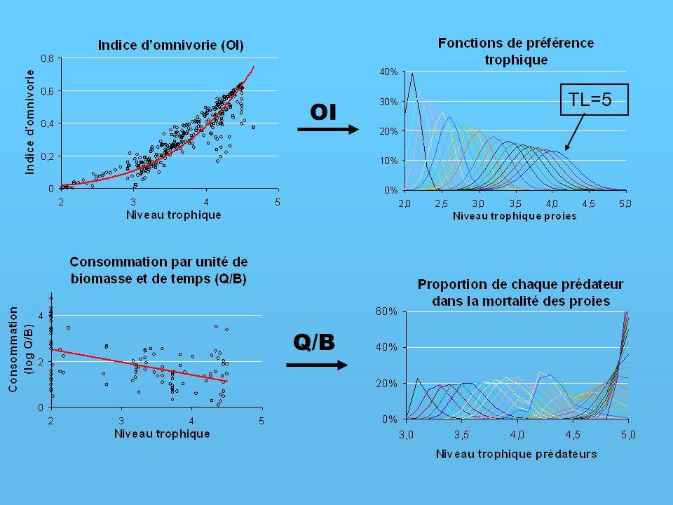 TL=5 OI Q/B