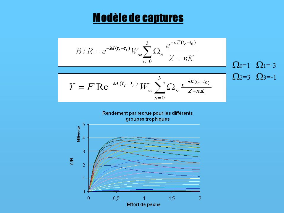 Modèle de captures 0=1 2=3 1=-3 3=-1