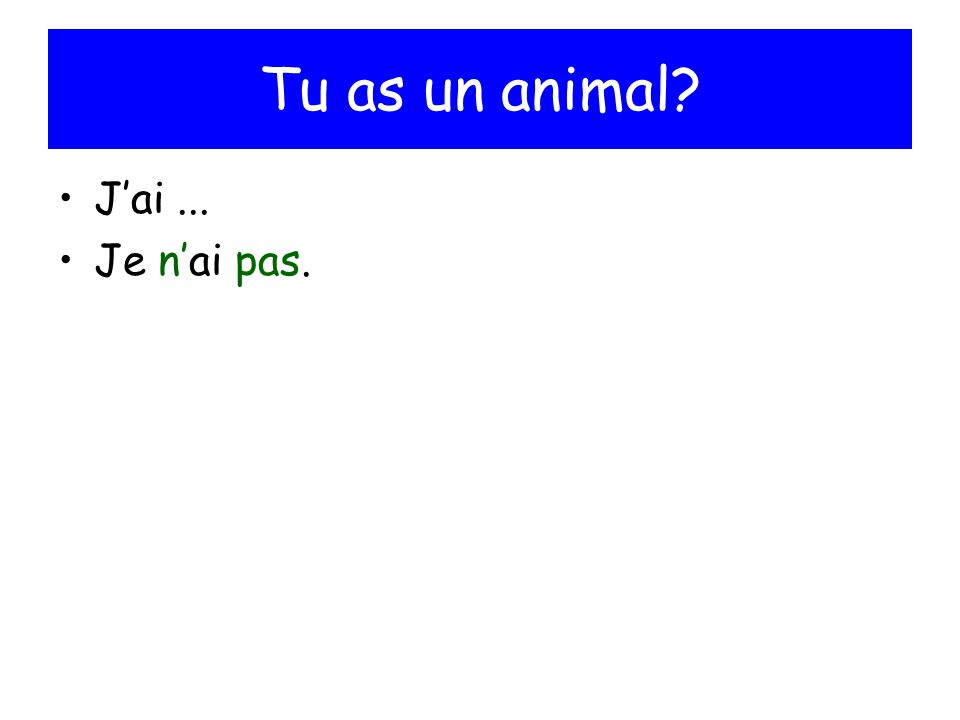 Tu as un animal J'ai ... Je n'ai pas.