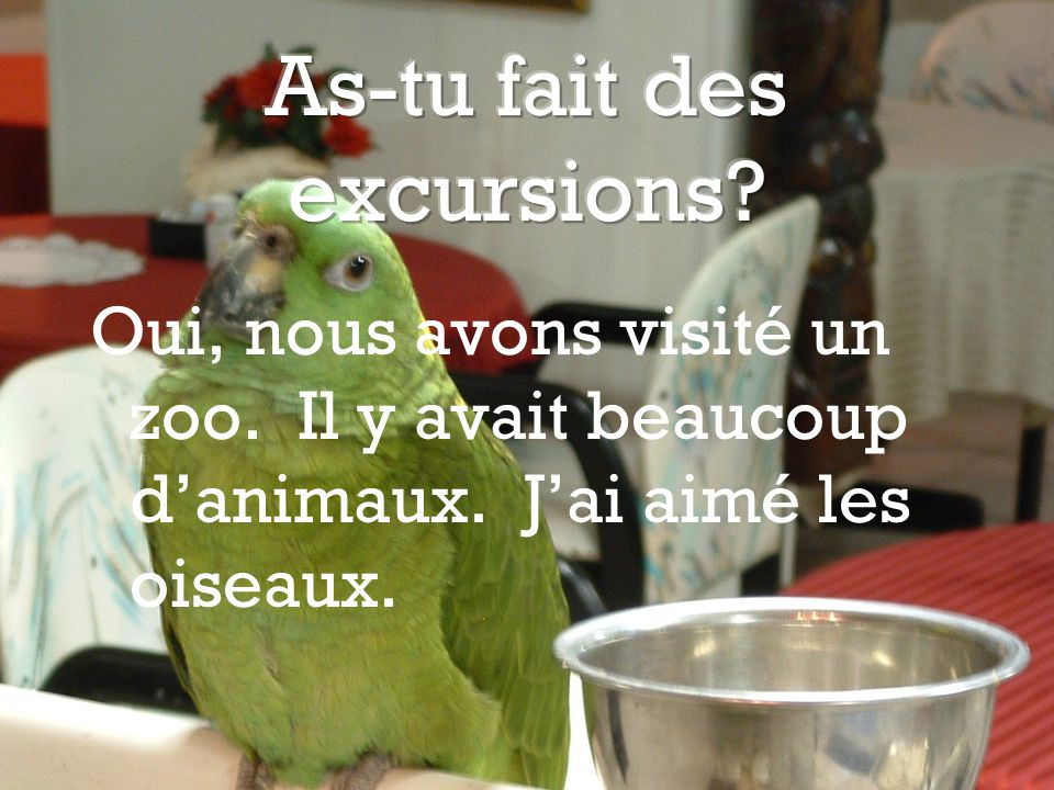 As-tu fait des excursions