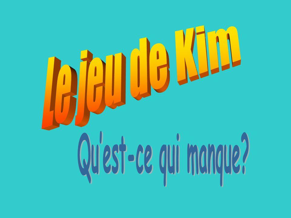 Le jeu de Kim Qu'est-ce qui manque