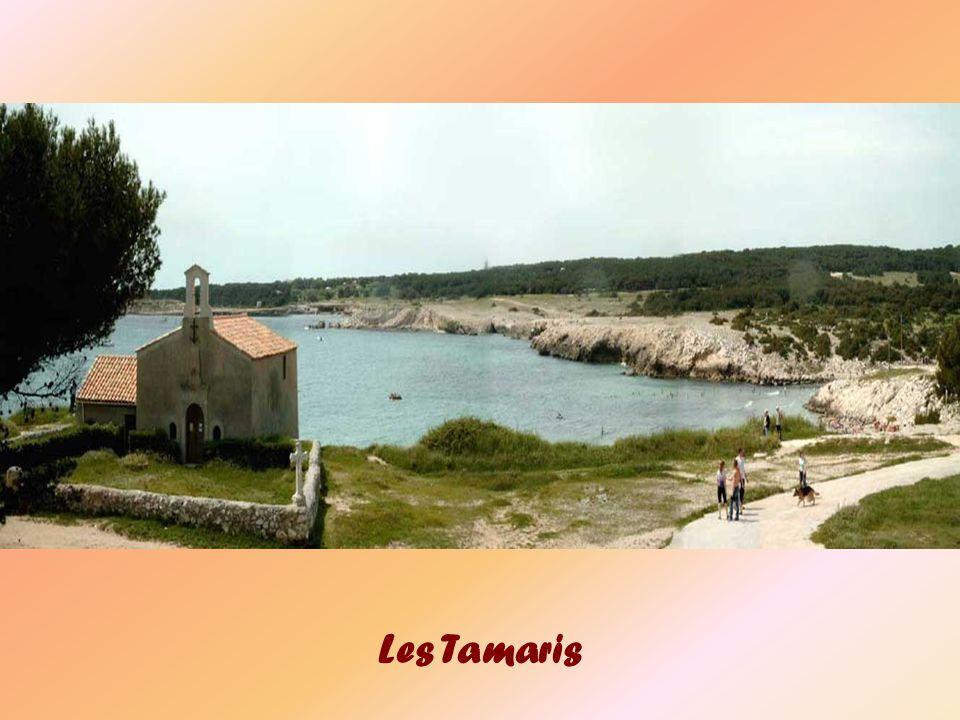 Les Tamaris