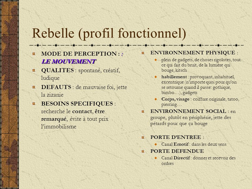 Rebelle (profil fonctionnel)