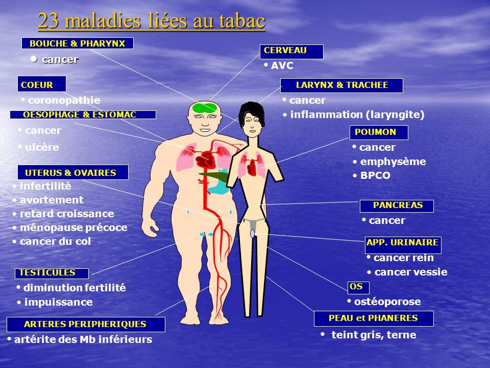 23 maladies liées au tabac