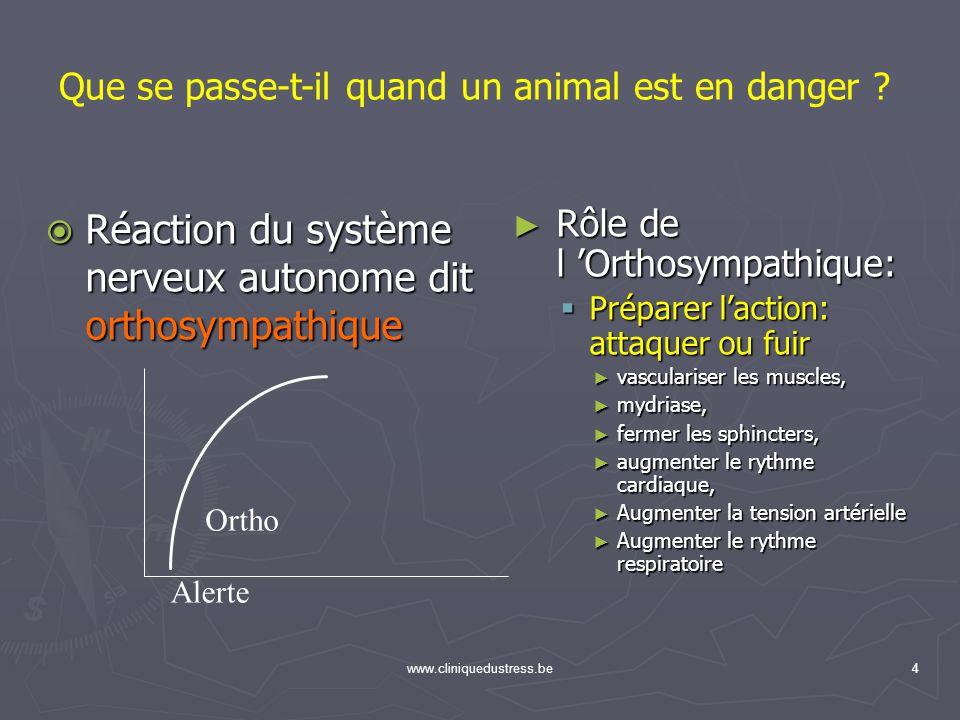 Réaction du système nerveux autonome dit orthosympathique