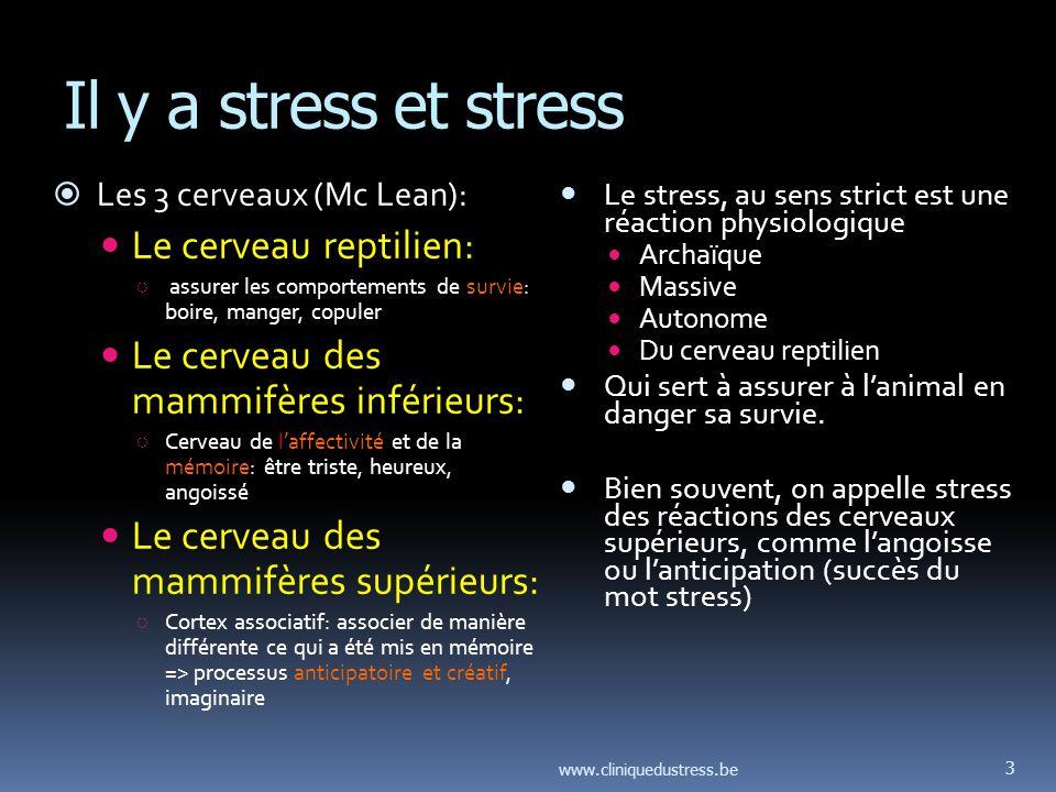 Il y a stress et stress Le cerveau reptilien: