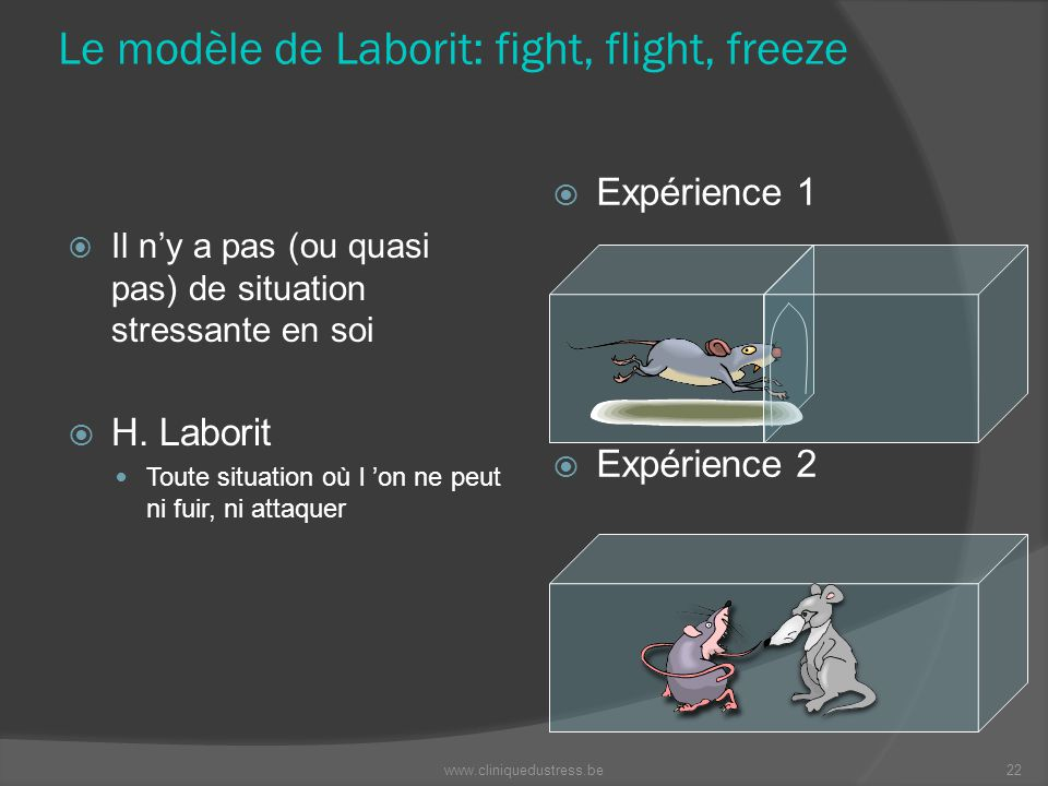 Le modèle de Laborit: fight, flight, freeze