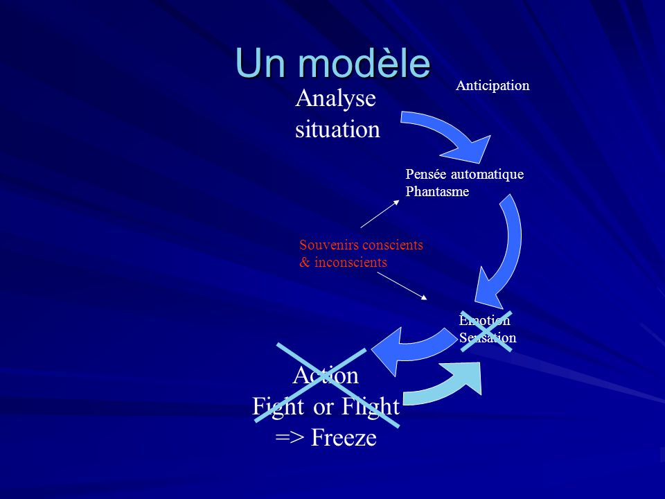 Un modèle Analyse situation Action Fight or Flight => Freeze