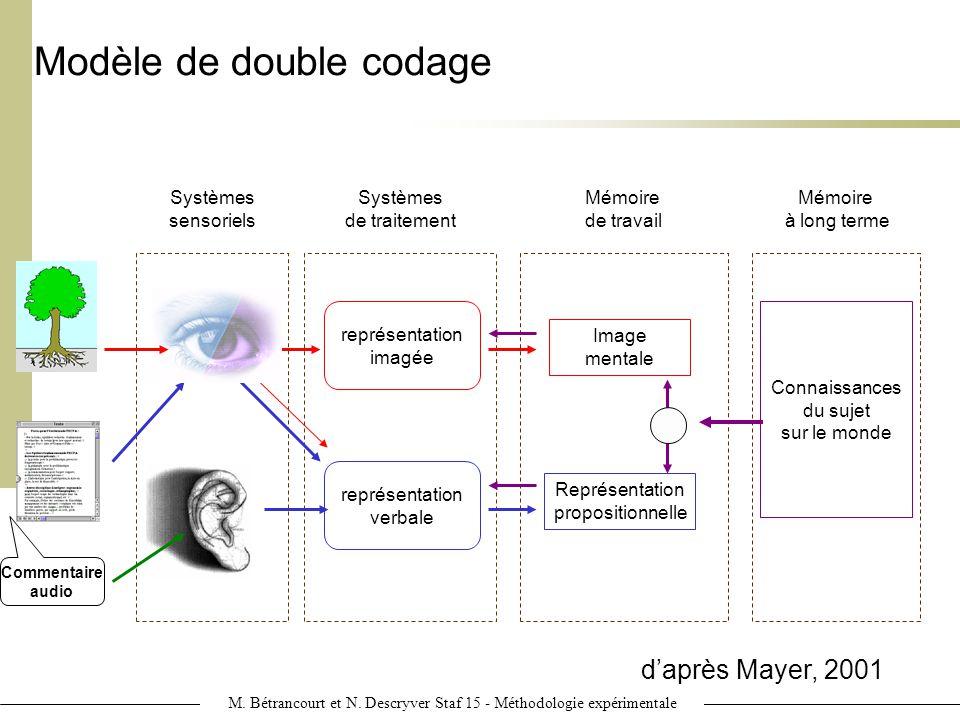 Modèle de double codage