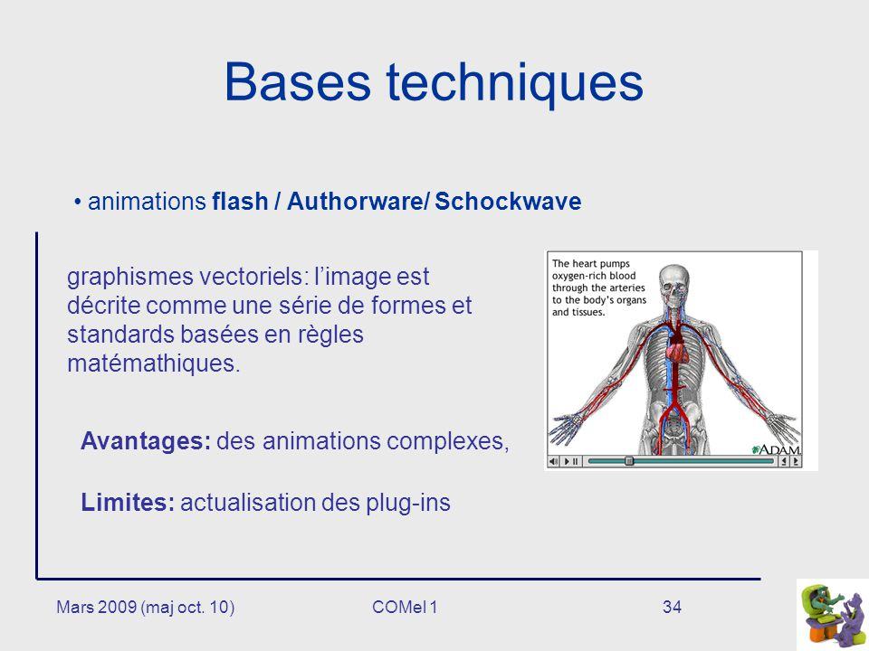 Bases techniques animations flash / Authorware/ Schockwave
