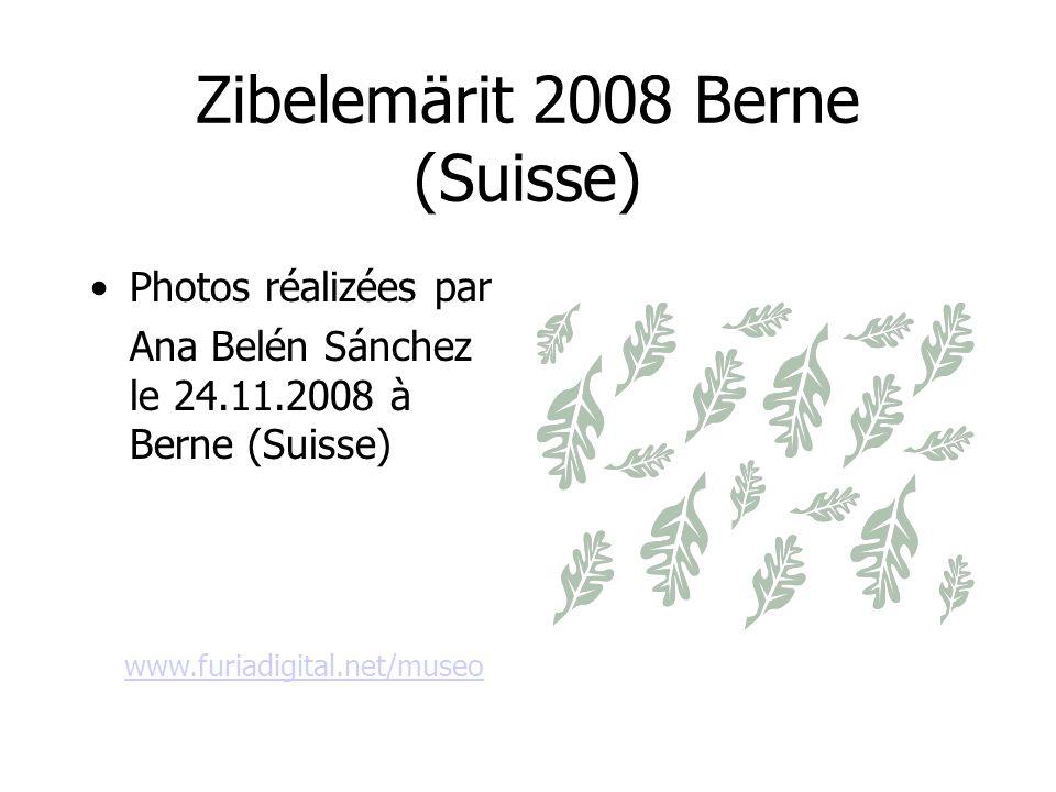 Zibelemärit 2008 Berne (Suisse)