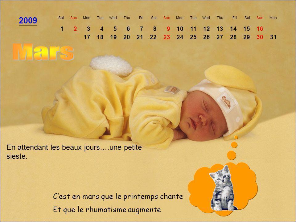 Mars 2009 En attendant les beaux jours….une petite sieste.