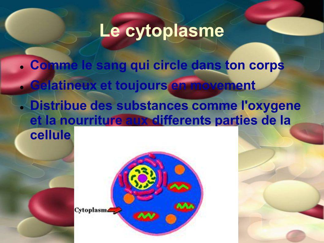 Le cytoplasme Comme le sang qui circle dans ton corps