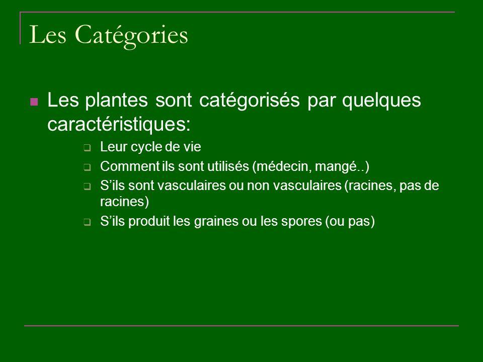 Les Catégories Les plantes sont catégorisés par quelques caractéristiques: Leur cycle de vie. Comment ils sont utilisés (médecin, mangé..)