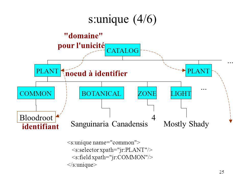 s:unique (4/6) domaine pour l unicité ... noeud à identifier ...
