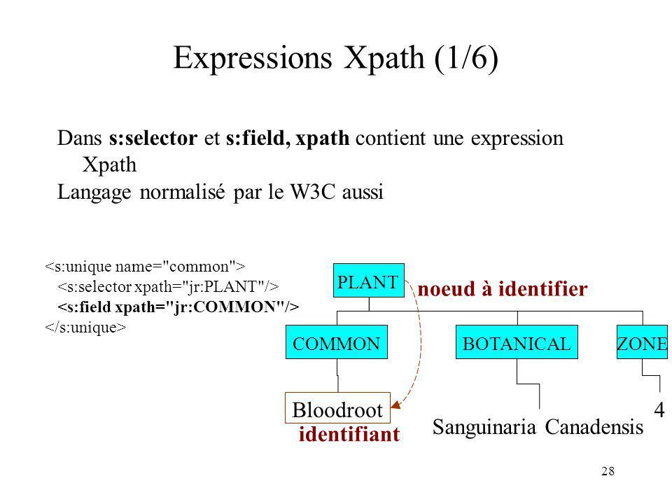 Expressions Xpath (1/6) Dans s:selector et s:field, xpath contient une expression Xpath. Langage normalisé par le W3C aussi.