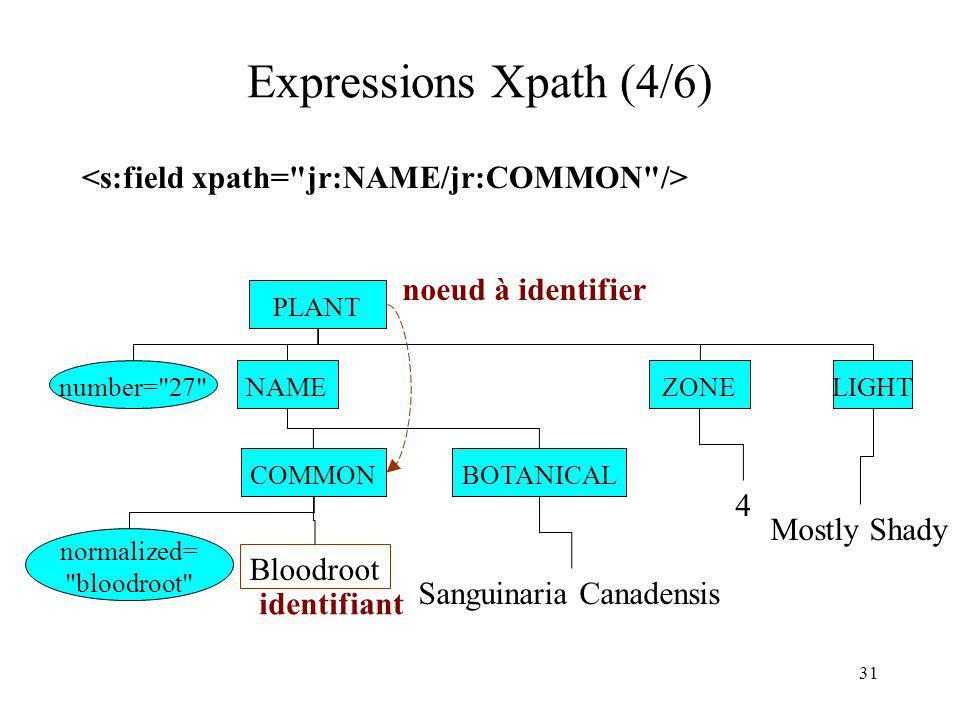 Expressions Xpath (4/6) <s:field xpath= jr:NAME/jr:COMMON />
