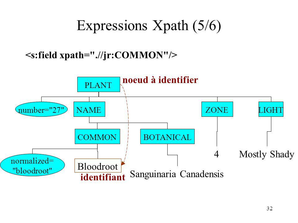 Expressions Xpath (5/6) <s:field xpath= .//jr:COMMON />